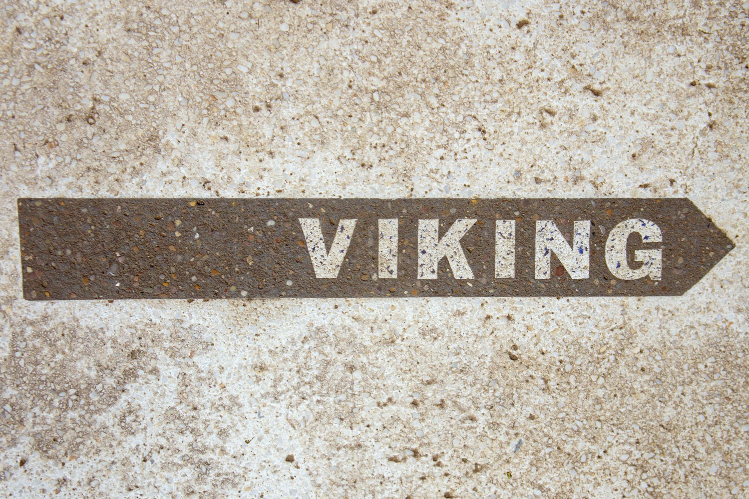 Viking - Found Type Filey
